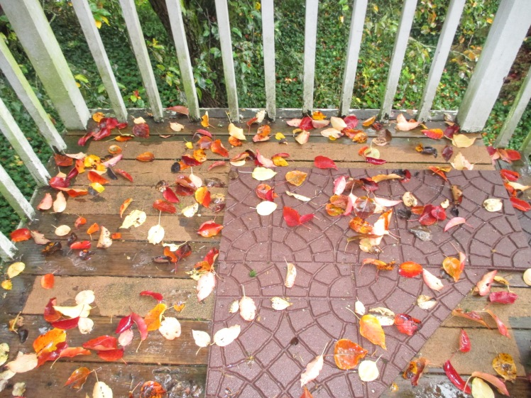 Leafy Porch